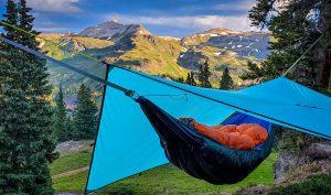 Summer Shelter